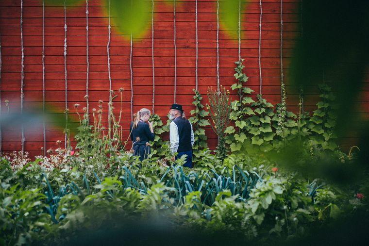 Das Gemüse das im Garten von Schloss Läckö wächst, wird nicht weit entfernt in einem der besten Restaurants Skandinaviens weiter verarbeitet - dem Hvita Hjorten.