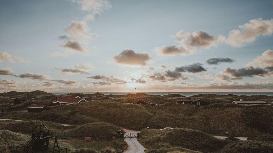 Dünen in Dänemark.