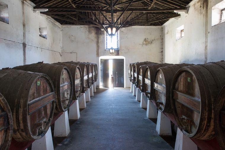 Die Winzerfamilie Pereira de Fonseca bietet auf ihrem Weingut Quinta do Sanguinhal in Bombarral einen Einblick in ihre Arbeit.