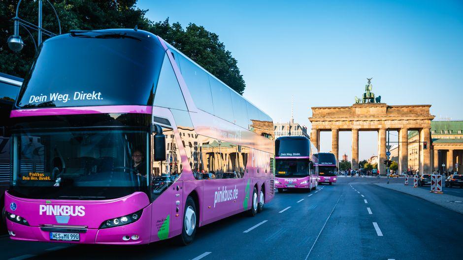 So sieht er aus, der neue Pinkbus.