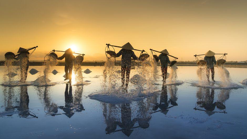 Bauern bei der Salzernte in Vietnam.