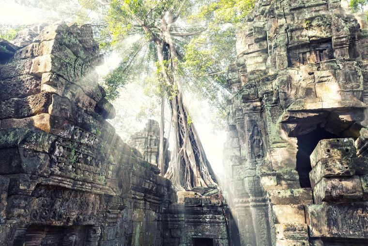 Temple in Angkor Thom in Kambodscha.
