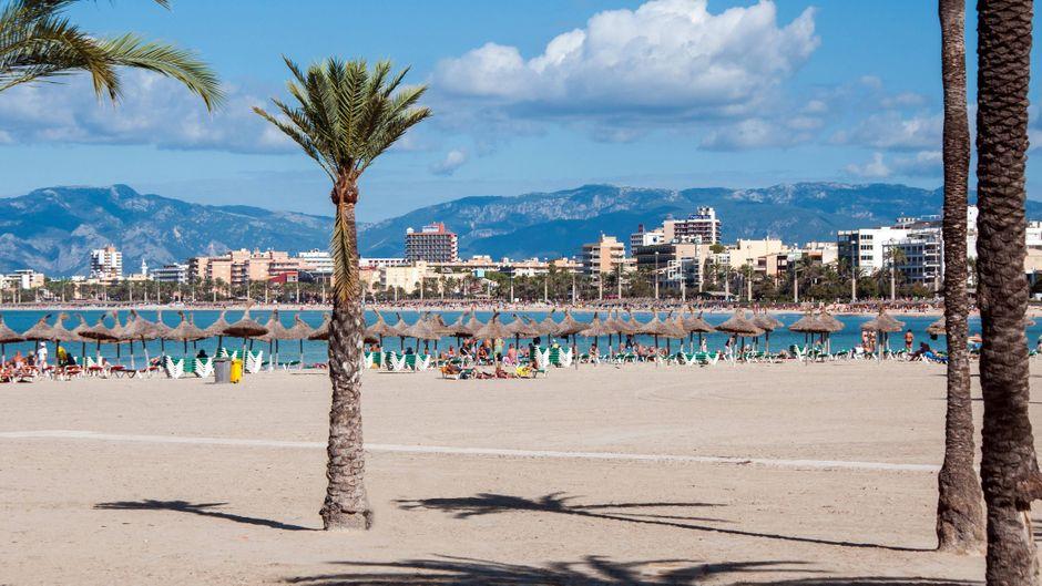 El Arenal gilt als Partyhochburg von Mallorca. In diesen tollen Hotels kannst du nach Partynächten entspannen. Oder aber auch einen ruhigen Urlaub an Pool und Mittelmeer, abseits des Trubels, genießen.