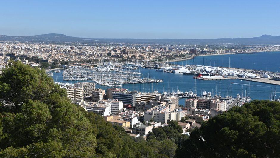 Mallorca ist insbesondere für deutsche Touristen ein beliebtes Reiseziel.