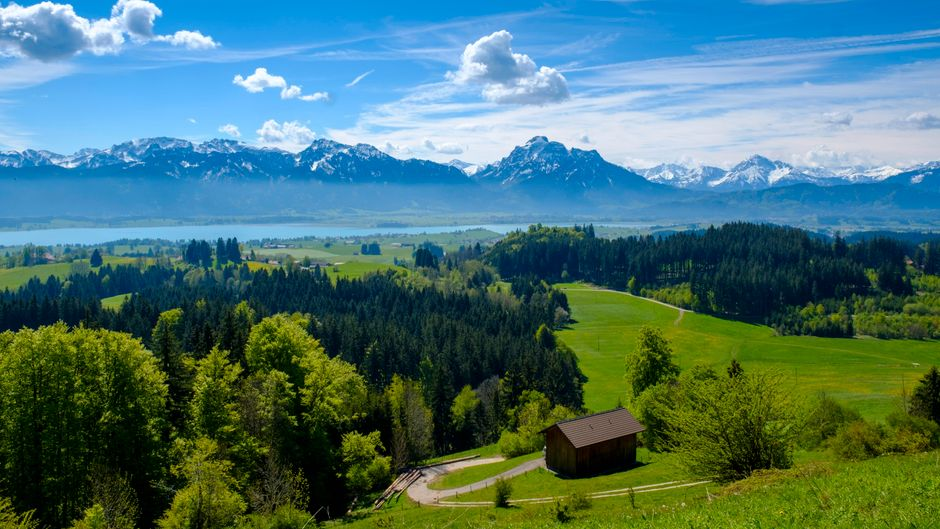 Die Aussicht über den Forggensee auf die Alpen. Doch die Natur und schöne Aussichten sind nur zwei von vielen Gründen für einen Urlaub im Allgäu!
