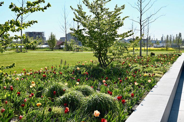 Bei der Landesgartenschau in Ingolstadt geben Schau- und Themengärten Anregungen für eine umwelt- und ressourcenschonende Gartengestaltung.