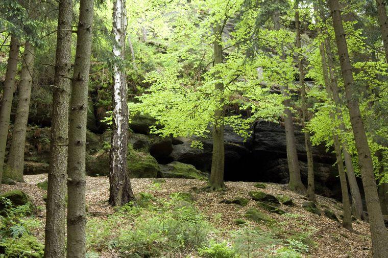 Die Diebeshöhle am Tafelberg Quirl.