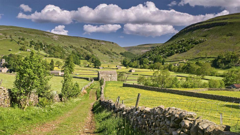 Eine Bothy inmitten einer grünen Landschaft.