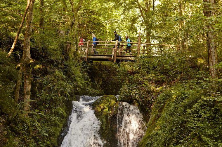 Die Wanderung mitten durch das wildromantische Tal der Endert in der Eifel ist ein Mix aus Naturerlebnis und Geschichte.