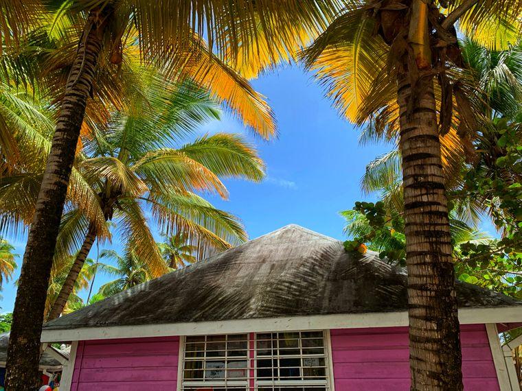 Rosa Haus auf Tobago.