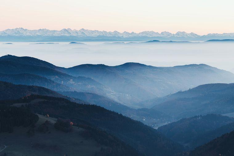 Mystischer Ort: Der Schwarzwald im Nebel