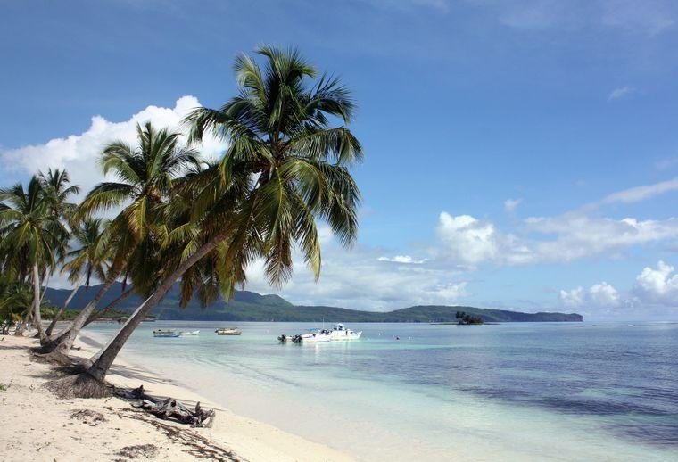 Das könnte dein Büro sein. Auf der Insel Samaná arbeitest du zwischen Palmen und weißen Sandstränden.