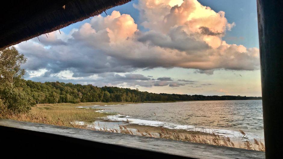 Breitwandkino am Rederangsee: Kommt die Dämmerung, beginnt das Warten auf die Kraniche, die ihre Schlafplätze aufsuchen. Aus der Hütte am Ufer hat man den besten Blick.