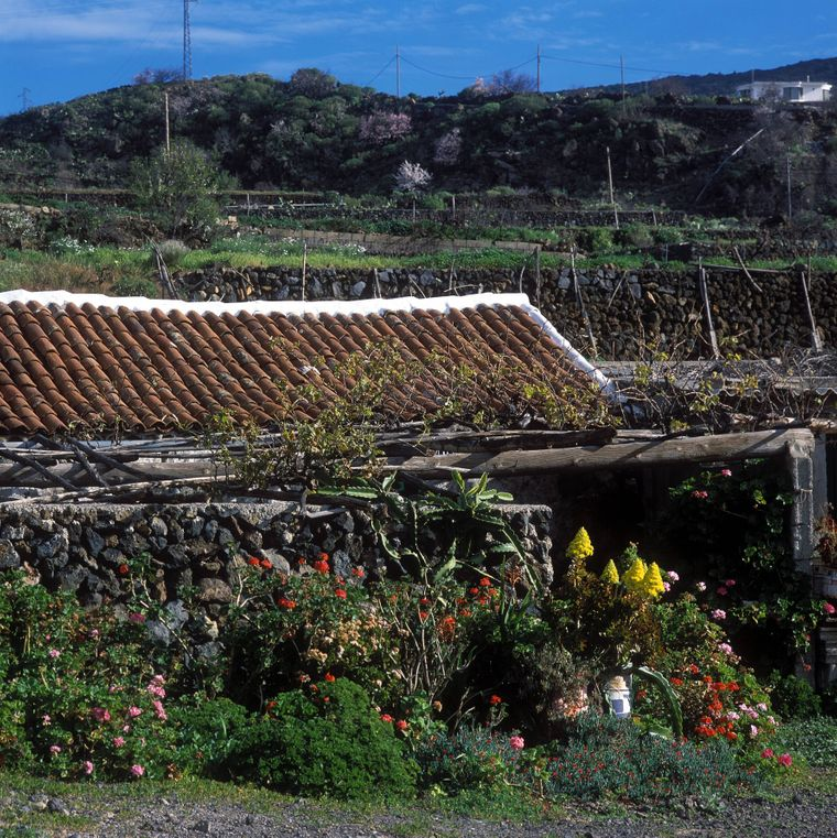 Tamaimo ist ein Ortsteil von Santiago del Teide im Südwesten von Teneriffa.