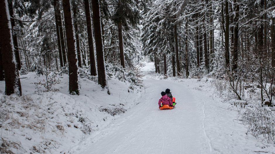 Zwei kleine Kinder fahren mit einem Schlitten im Winter auf einem mit Schnee bedeckten Waldweg in Bayern.