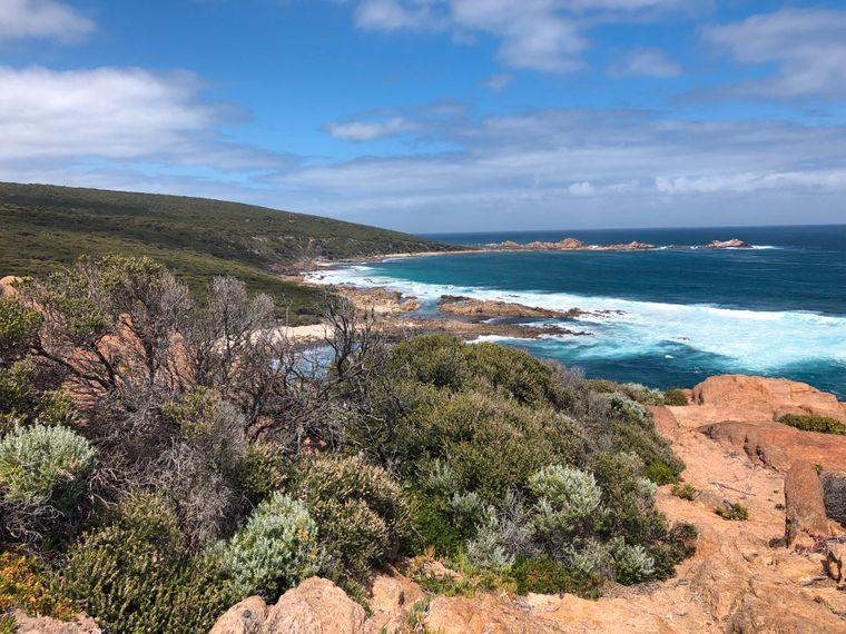 Auf den 135 Kilometern des Küstenwanderweges Cape-to-Cape-Track gibt es viel zu sehen.