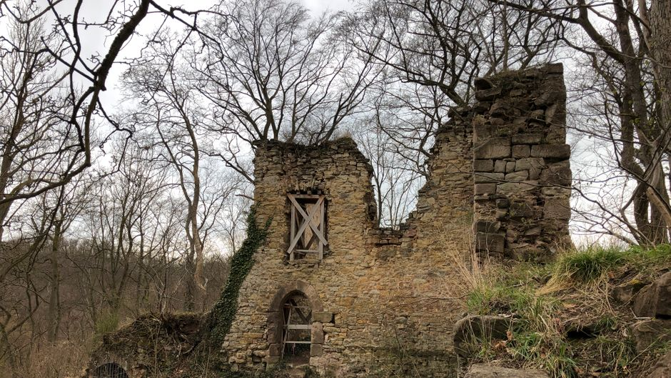 Die Ruine Altenstein