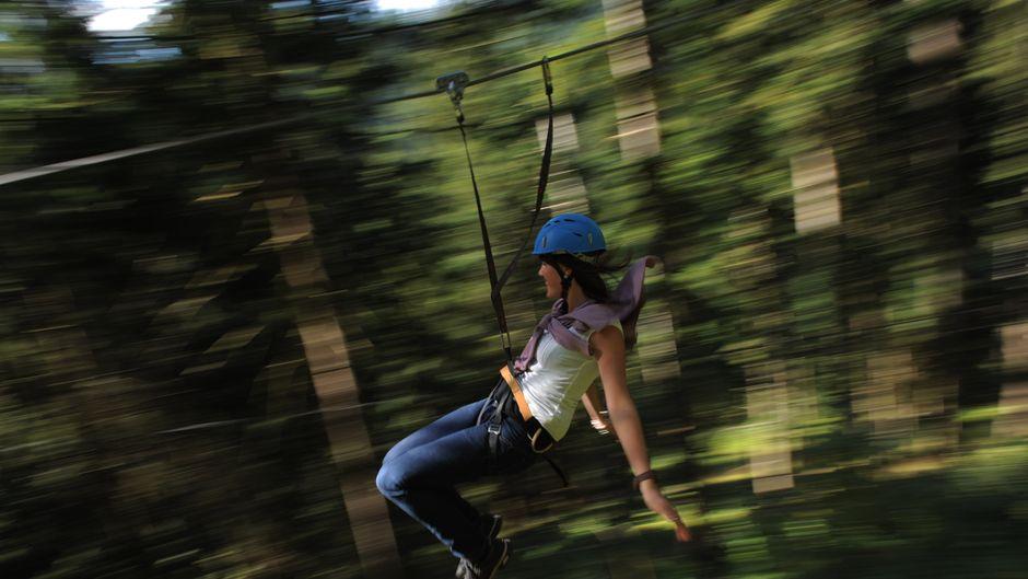 Eine Frau rutscht an einer Zipline durch einen Wald.