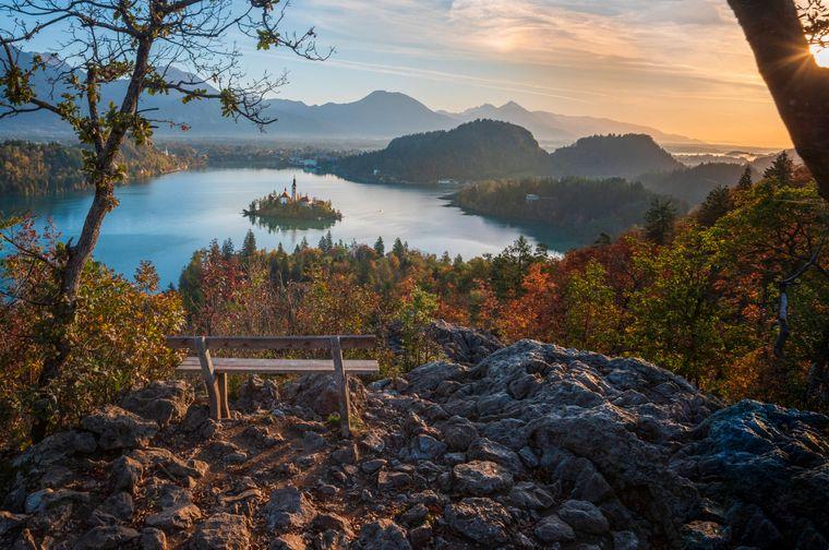 Von hier aus hast du einen herrlichen Blick auf die kleine Insel mitten im Bleder See.