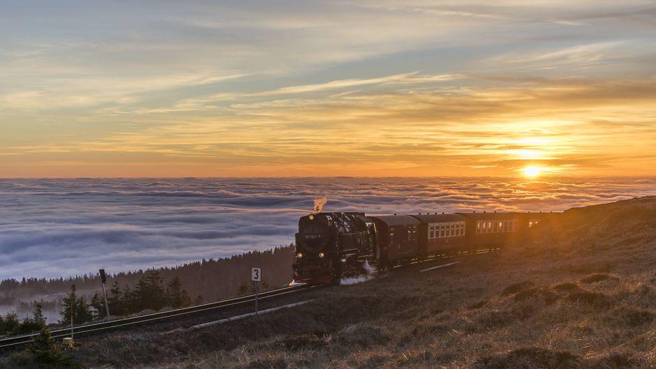 Durch die Fenster der Brockenbahn haben Fahrgäste einen tollen Ausblick auf den Harz.