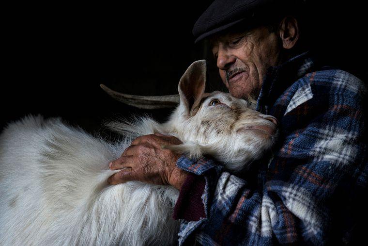 Abílio da Fonseca kuschelt mit einem seiner Tiere – der über 80-Jährige ist Farmer in Portugal.