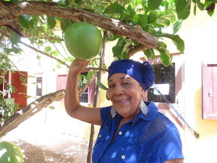 Dinah Veeris kennt die Kräuter auf Curaçao wie keine andere.