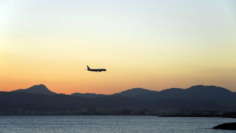 Ein Flugzeug landet auf Mallorca. Die Veranstalter und Airlines bieten jede Menge Deals zu Ostern an.