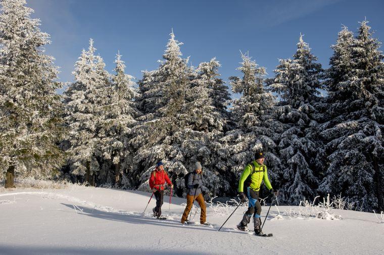 Eine Schneeschuhwanderung führt dich im Thüringer Wald in Gegenden abseits ausgetretener Pfade.