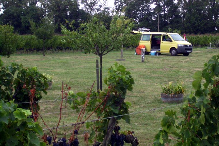 Auf dem Weingut Chateau d'Esther bei Bordeaux kannst du campen.