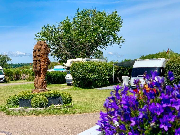 Der Campingplatz Seepferdchen gehört zu den schönsten Campingplätzen an der Ostsee.