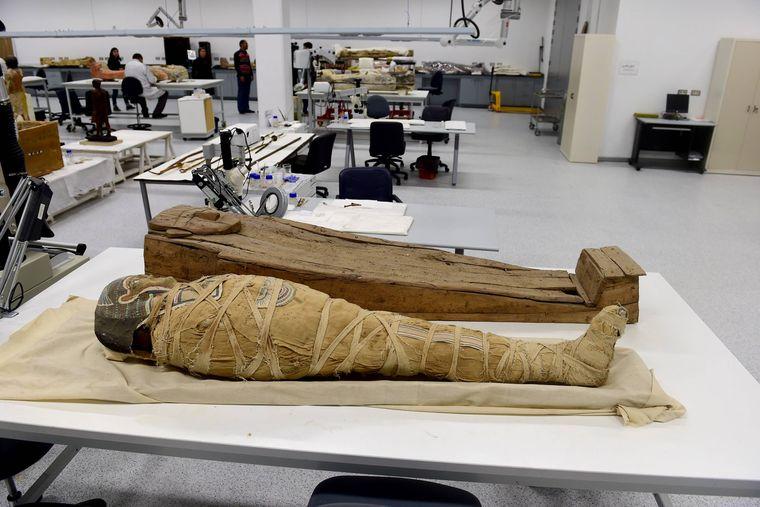 Im museumseigenen Labor werden Ausstellungsstücke vorbereitet und restauriert. Darunter sind auch jede Menge Mumien.