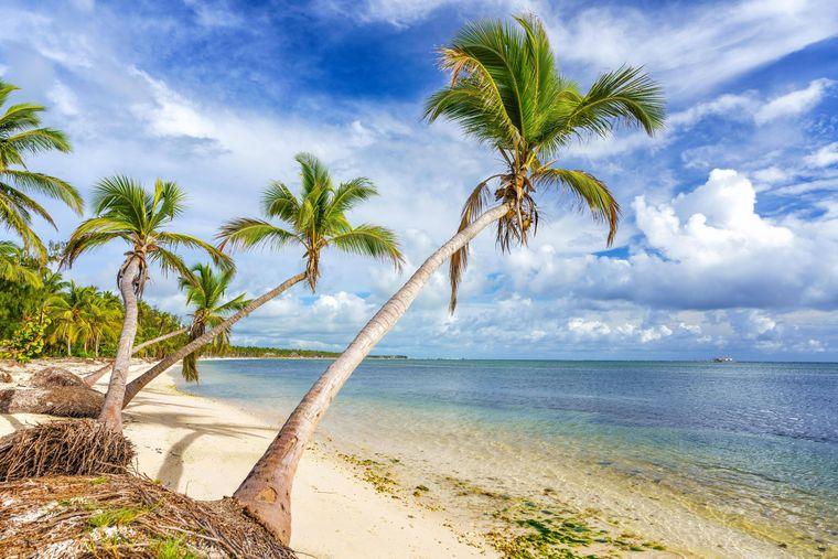 Punta Cana ist neu im Flugplan.