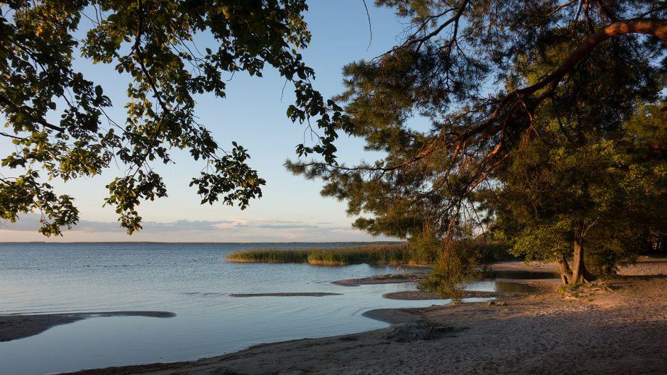 Inmitten der Mecklenburgischen Seenplatte liegt die Müritz. Der Ort liegt sehr idyllisch: Viele Pflanzen, viel Wasser und viel Erholung.