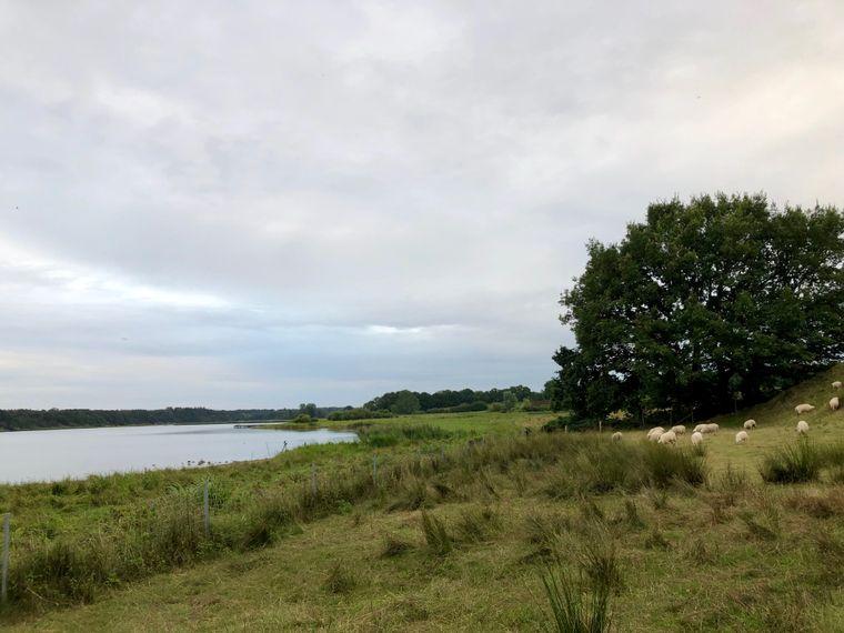 Heute romantisch, damals strategisch günstig: Hier befand sich einst die bedeutende Wikinger-Siedlung Haithabu.