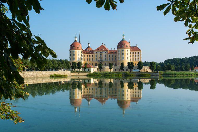 Moritzburg August der Starke ließ Schloss Moritzburg im 18. Jahrhundert zu einem prunkvollen Jagddomizil umbauen. Mehrere Hirschgeweih-Ausstellungen zeugen noch heute von dieser lange gehegten Tradition.