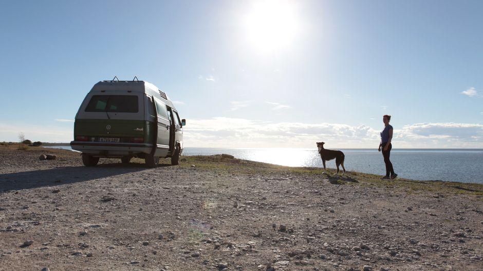 Ute mit ihrer Hündin Conchi und ihrem VW Bus T2 in Schweden unterwegs.