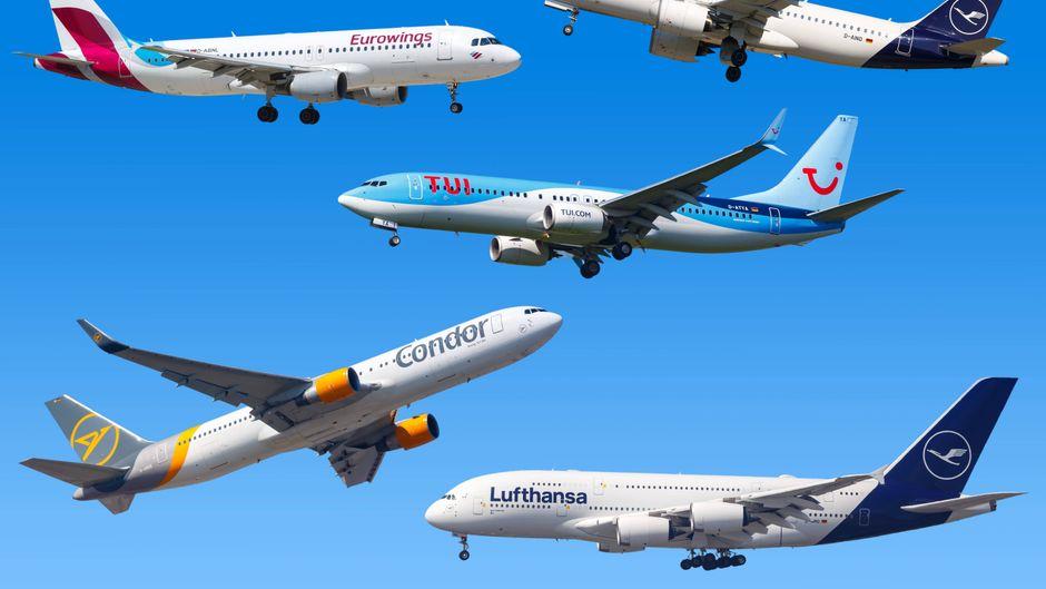 Lufthansa, Eurowings, Condor, Tuifly und Co. fliegen trotz Reisewarnung weiterhin nach Mallorca.