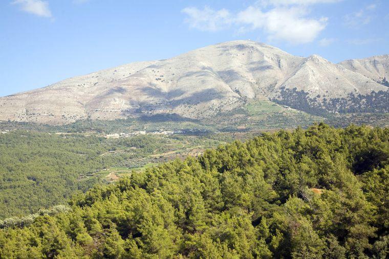 Embonas ist ein Bergdorf mit Weinbautradition auf der griechischen Dodekanes-Insel Rhodos.