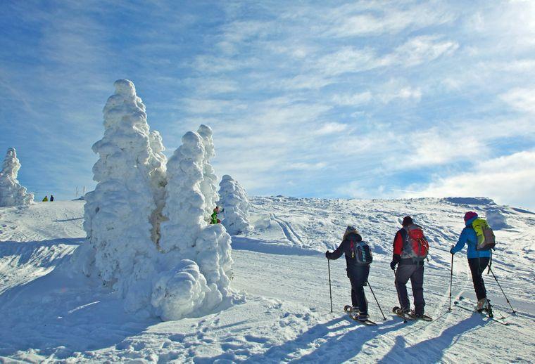 Traumhaftes Wetter zum Skilanglaufen im Bayerischen Wald.