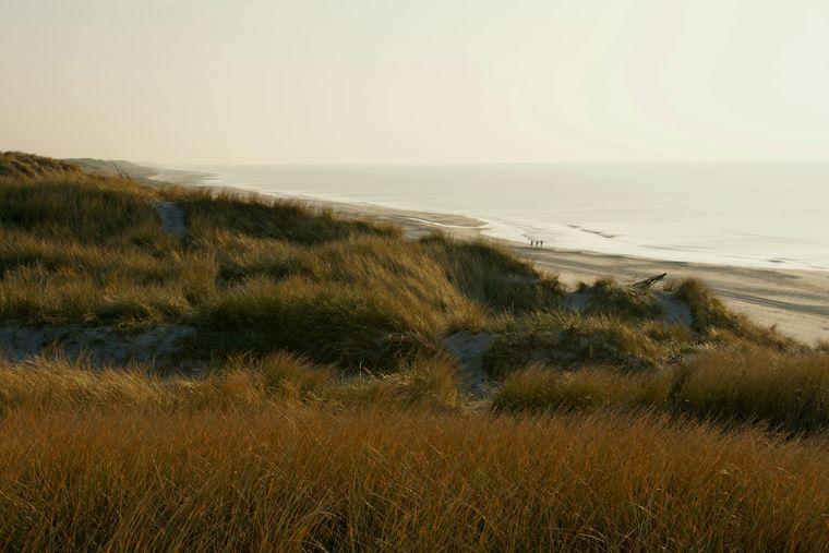 Einsame Strände: Im Winter ist entlang der dänischen Nordseeküste wenig los.