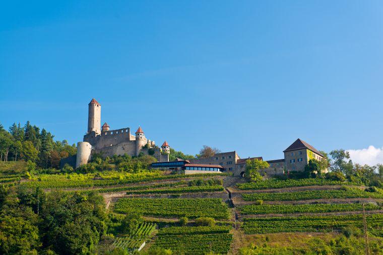 Blick auf die hochgelegene Burg Hornberg bei Neckarzimmern