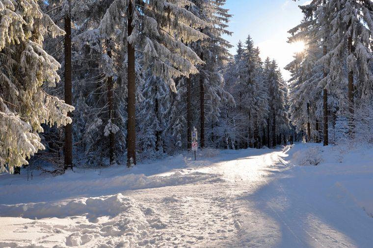 Der Ochsenkopf im Fichtelgebirge gilt als Schnee-Hotspot in Deutschland.