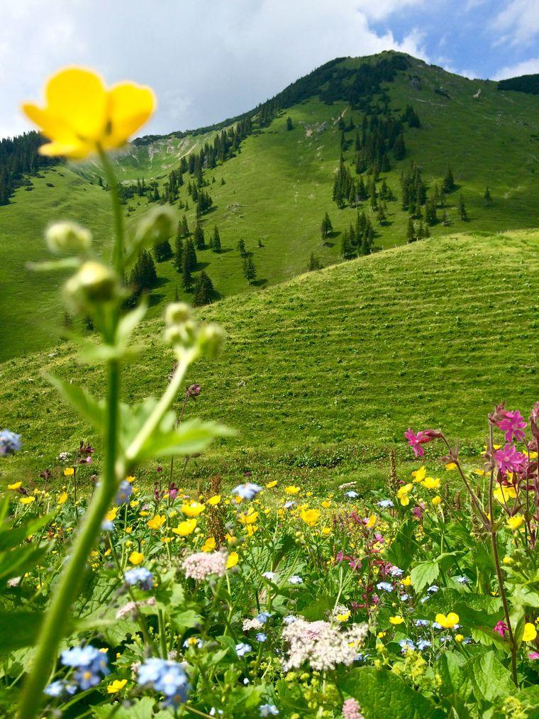 Oberjoch ist zu jeder Jahreszeit einen Besuch wert.