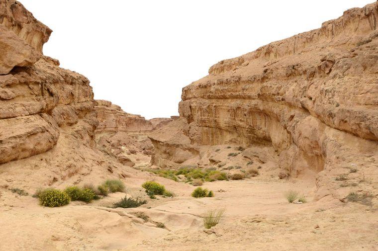 In der Sidi-Bouhlel-Schlucht, auch Star-Wars-Canyon genannt, findet das Podrennen mit den bis zu 900 Kilometer pro Stunde schnellen Kapseln in Episode I statt.