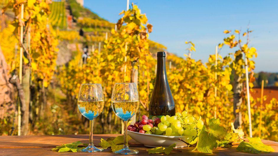 Das Weinbaugebiet Sachsen ist eines der kleinsten und das östlichste Weinbaugebiet Deutschlands.