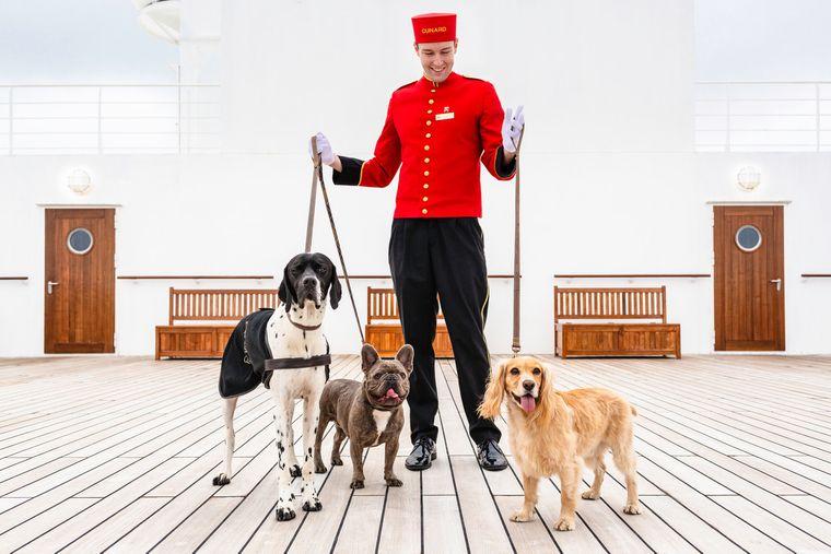 Der Haustier-Service der Cunard Line.