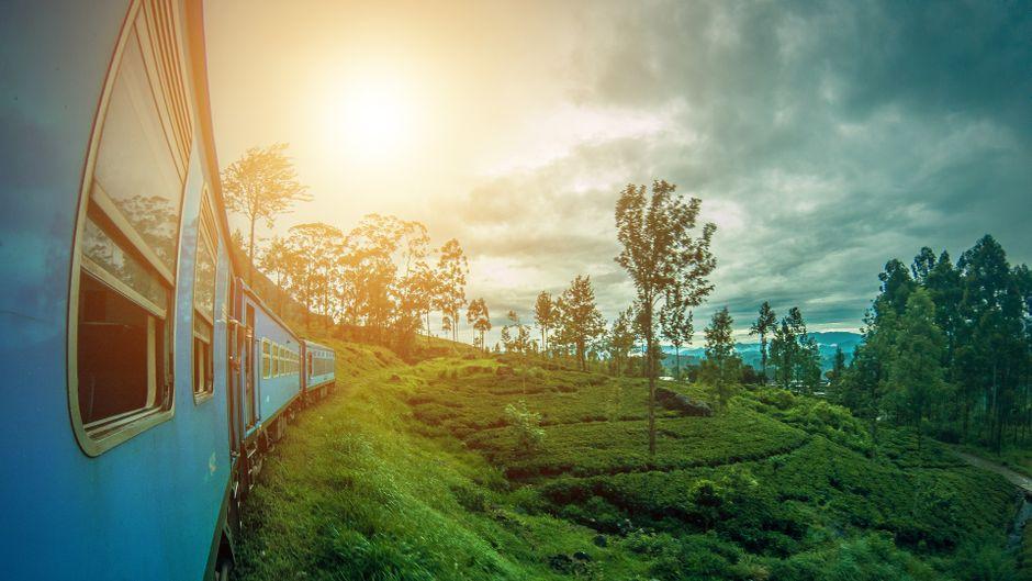 Sri Lanka spricht alle Sinne an, ist mal bunt, mal grell, aber immer wunderschön.