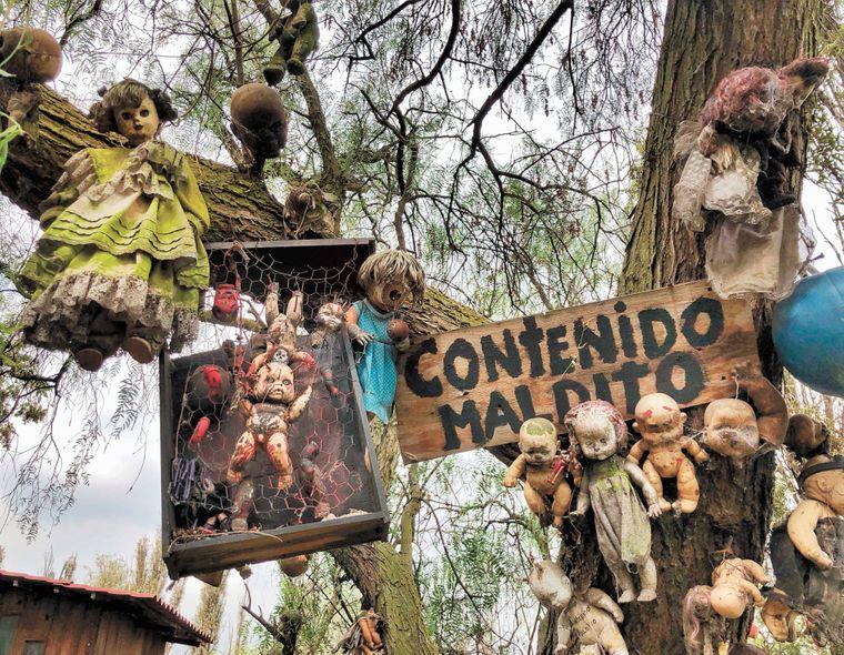 Rund 1000 teils entstellte Puppen hängen auf der Insel in den Bäumen
