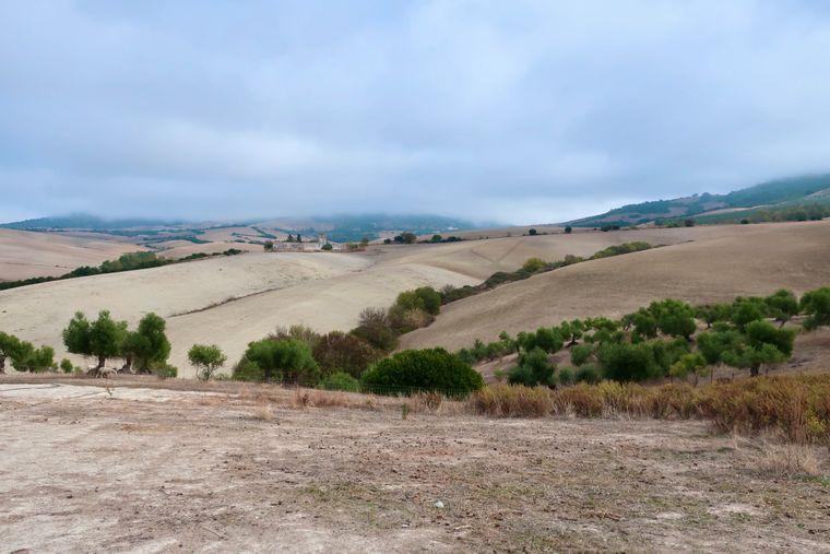 Wüstenbildung ist in Andalusien ein großes Problem.