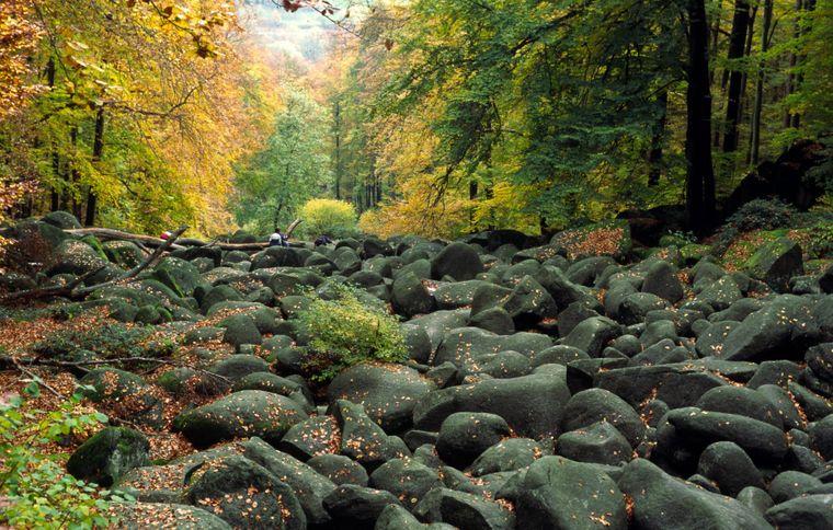Felsenmeer bei Reichenbach im Odenwald
